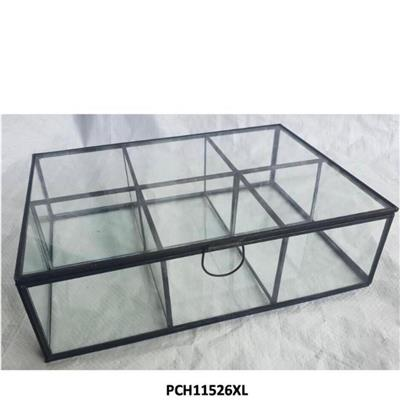 קופסאת זכוכית לתה